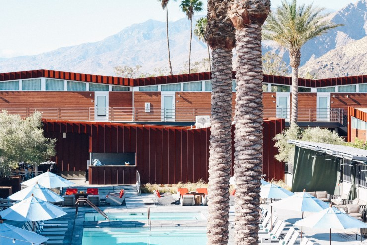 dani-on-the-loose-palm-springs