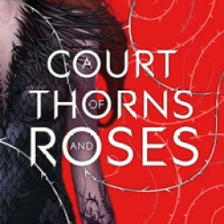 Fanfic Friday No.1: A Court of Thorns and Roses