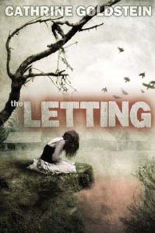 Series-so-far Review: The Letting and The Coupling