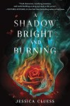 A Shadow Bright and Burning cover