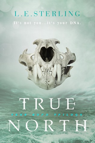 #BookReview: TRUE NORTH by L.E. Sterling
