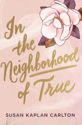 #BookReview + #FirstChapter: IN THE NEIGHBORHOOD OF TRUE by Susan Kaplan Carlton