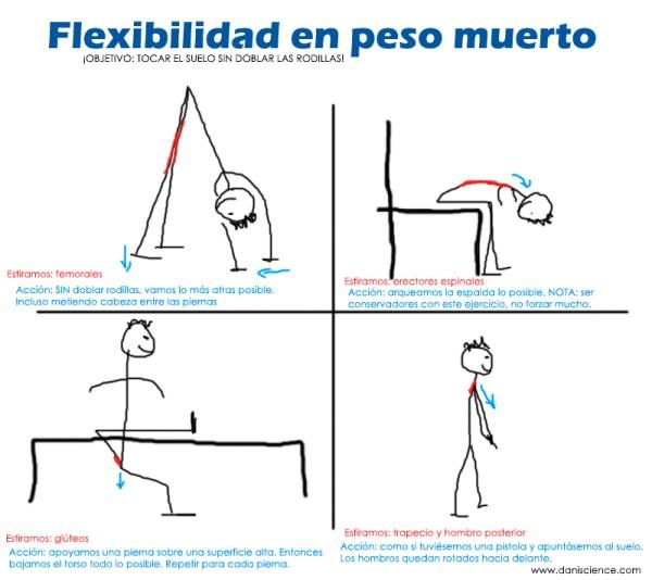 flexibilidad-peso-muerto