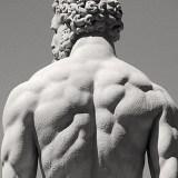 Fitnescience entrenamiento y dieta
