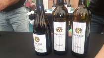 taste of huntington beach, charity event, hb sports complex, library