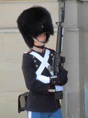 Guard with gun