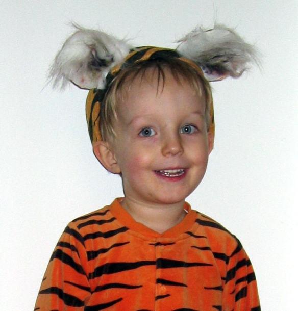Tiger ører - Kan du li' at klæde dig ud? Må det være hjemmelavet udklædning? Her har jeg lavet fotoinstruktioner til