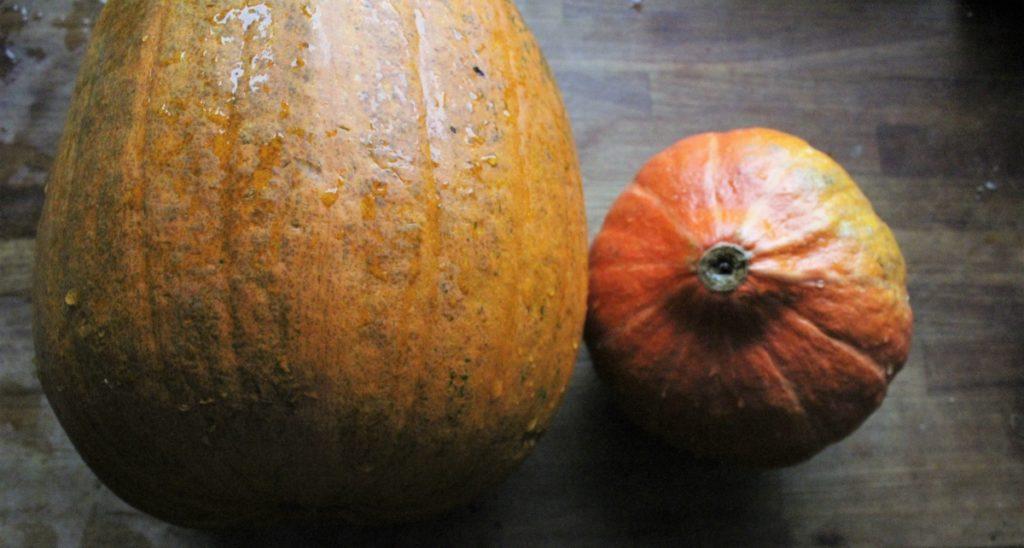 Hjemmelavet græskarpuré og sprøde græskarkerner - find opskrifterne på danishthings.com © Danish Things
