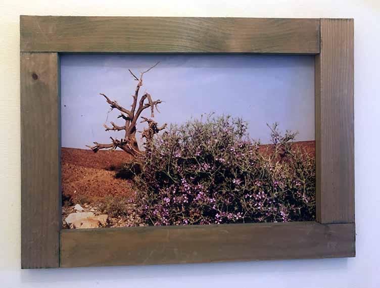 """תמונה עם מסגרת עץ מק""""ט: 1524"""
