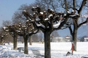 100 שלג, שוויץ