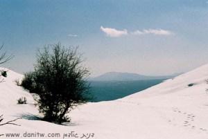 168 שלג, רמת הגולן, ישראל
