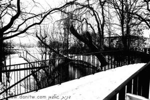 שחור לבן, גשרים, גרמניה