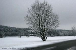 382 שלג, גרמניה