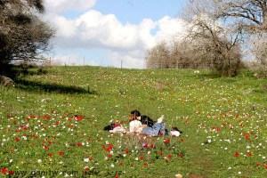 435 פרחים ועצים, עמק יזרעאל, ישראל