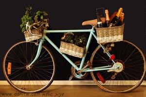 5104 אופניים, רמת הגולן, ישראל