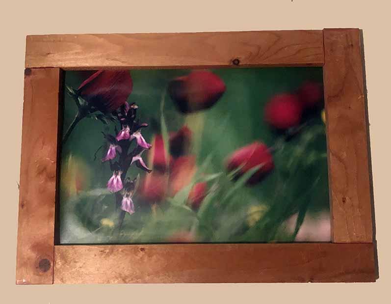 תמונות עם מסגרת עץ