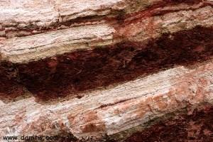 תמונות יפות למכירה צילום טבע אבנים, הערבה, ישראל 1353