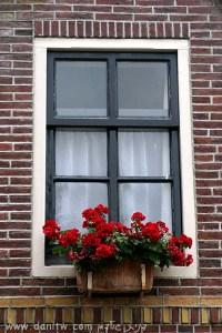 תמונות יפות למכירה צילום חלונות, הולנד 301