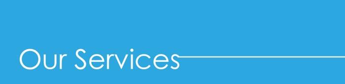 Danixon-Services