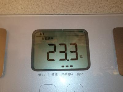 ダイエット4日目の体脂肪率