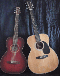 12 Fret Parlor Guitar and 14 Fret Martin OM-28