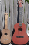My Ukuleles. Soprano next to Baritone.