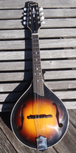 Kentucky mandolin