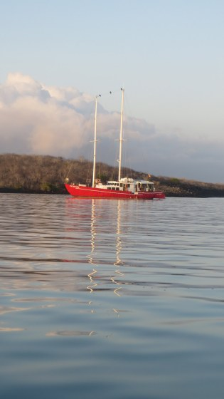 """Encantada, our 70´ """"tour"""" boat, carries 12 passengers and 6 crew"""