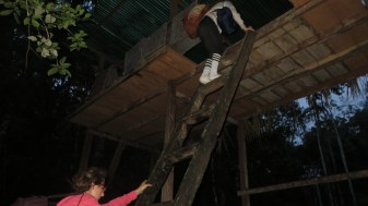 Climbing into our sleepover platform in the jungle to watch for animals all night.