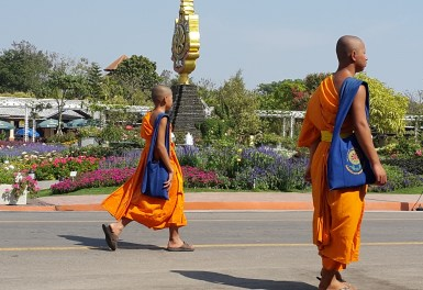 Colorful monks enjoying the Royal Park, Rajapruek