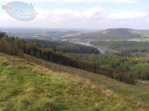 View of Cheshire.