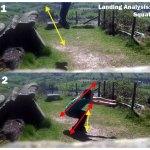 Training - Landing Analysis