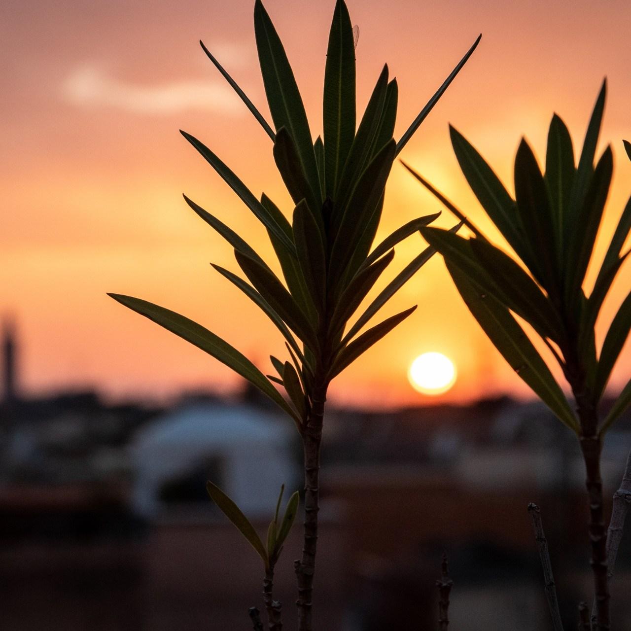 Morrocco sunset