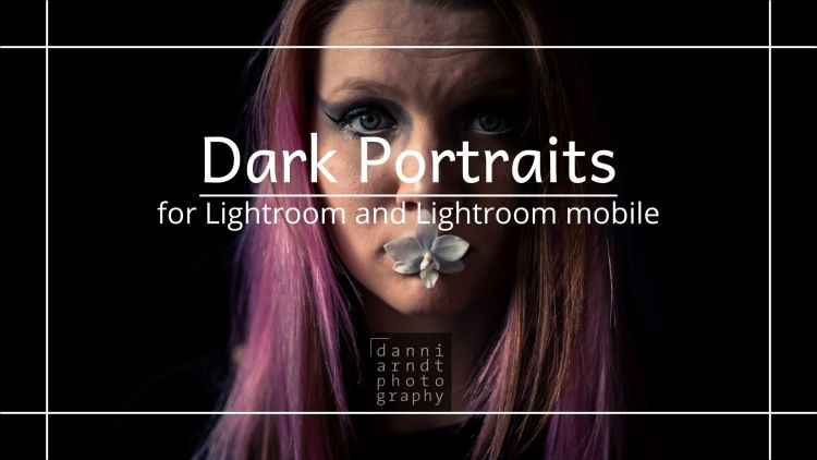 Vorschau Dark Portraits Presets Blue-Orange