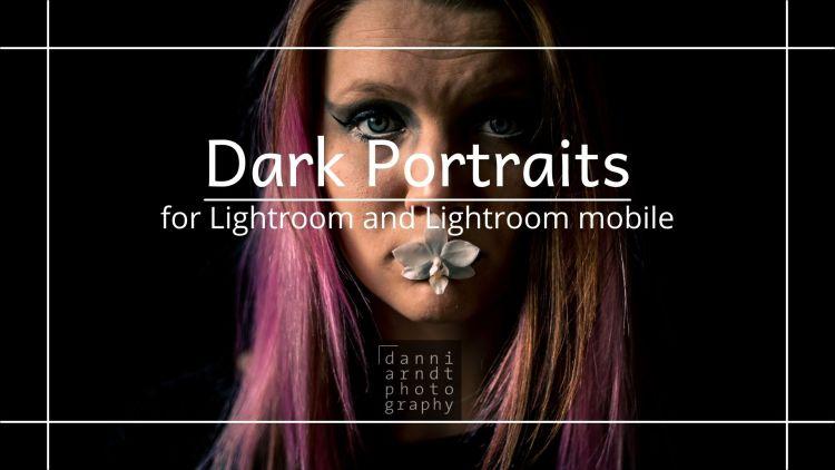 Vorschau Dark Portraits Presets Tiel-Orange