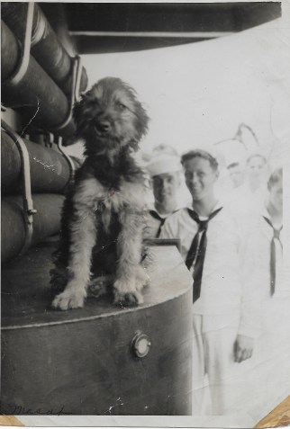 Dog and sailor