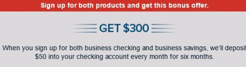 Capital One Business Checking Savings 300