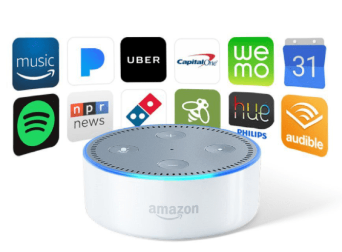 Build an Alexa Skill  Get a T Shirt or Echo Dot   Alexa Skills Kit.png