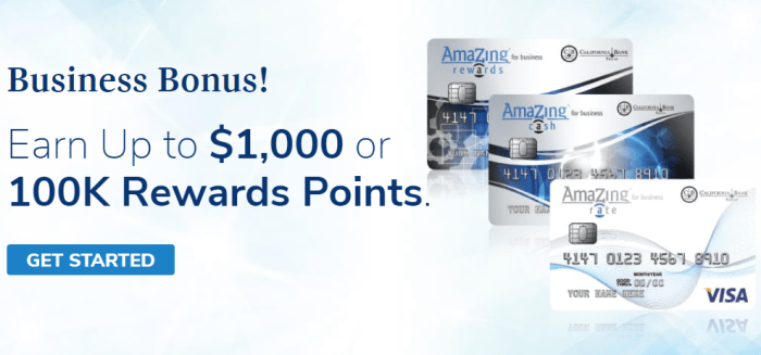 AmaZing Business Visa Credit Card