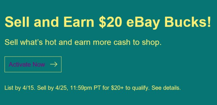 eBay Seller Offer
