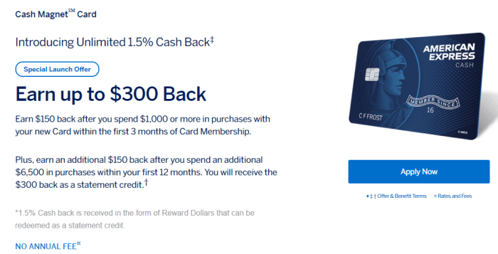 American Express Cash Magnet Card