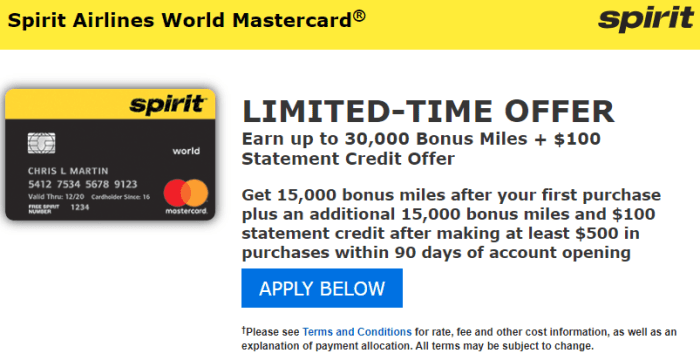 Bank of America Spirit Airlines Card bonus