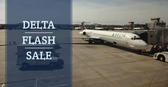 Delta Flash Sale