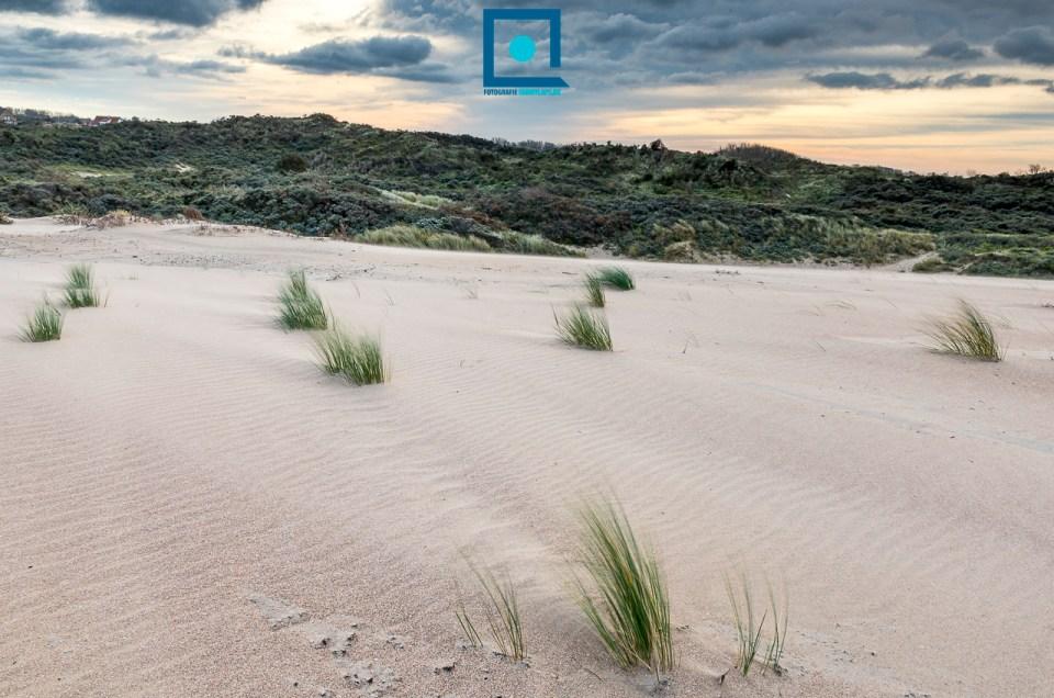 Fotograferen met wind en een suggestie voor een fantastische workshop