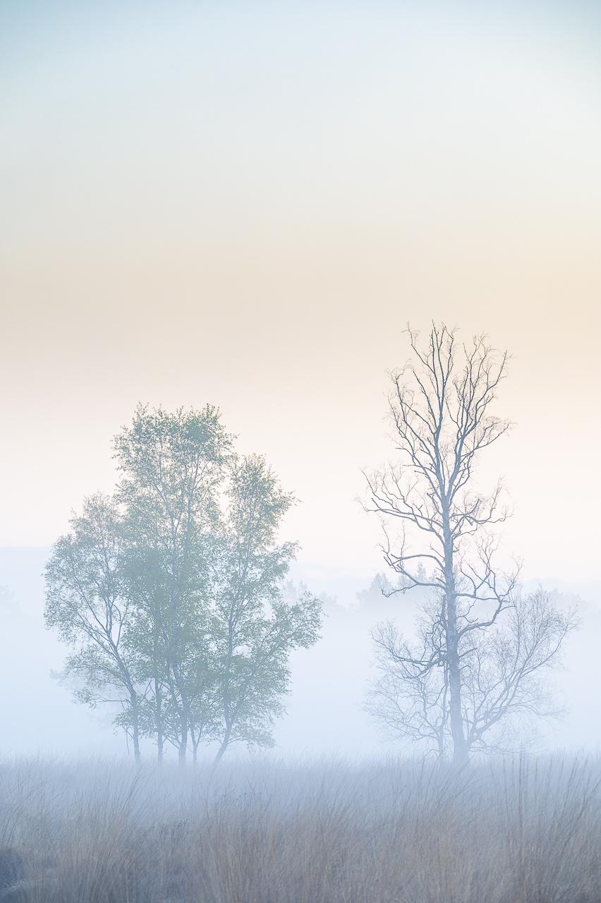Landschappen - Landschapsfotografie met de telelens in HDR (High Dynamic Range, samengesteld in Lightroom)