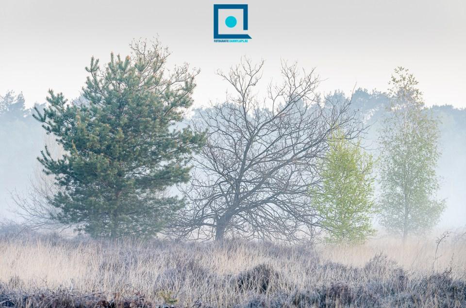 Landschappen met de telelens