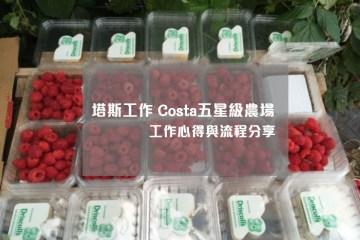 塔斯工作 Costa五星級農場紅莓工作心得與流程分享