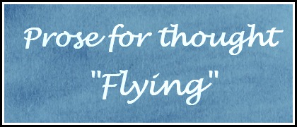 Flying – Prose for thought