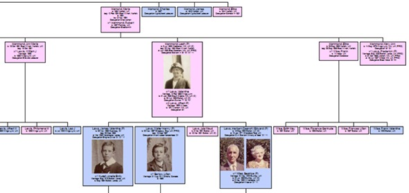 Tracing your family tree - from an article by DannyUK.com