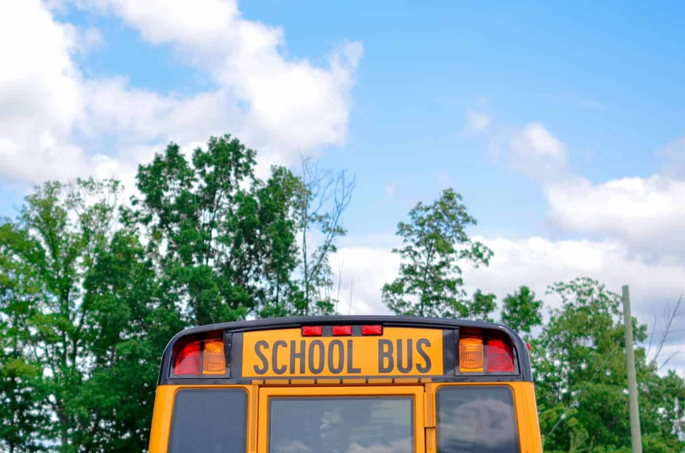 school bus accidents in greenville south carolina